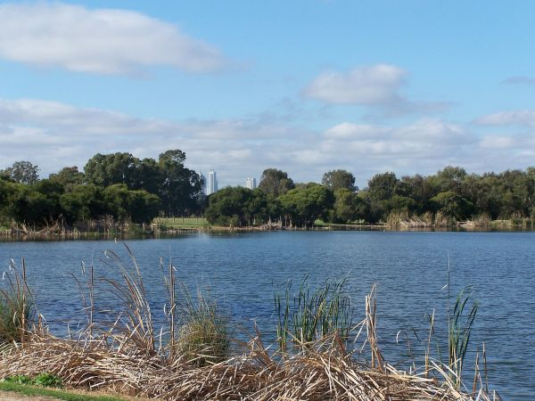 Herdsman Lake looking SE towards Perth city centre - Photograph by Gnangarra