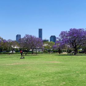 Brisbane CBD seen from New Farm Park By Kgbo https://commons.wikimedia.org/w/index.php?curid=80713728