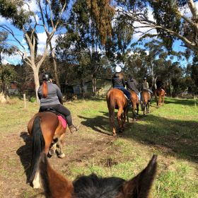 Hahndorf Trail Ride and Lunch September 2020