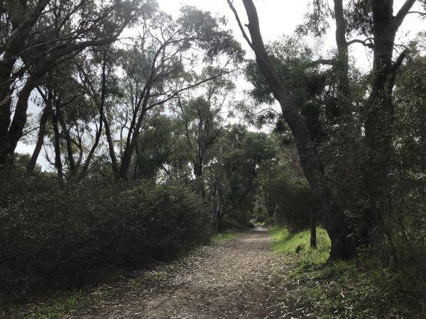 Bushland hideaways