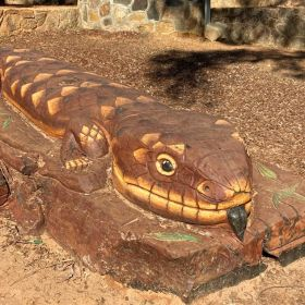 This Lizard is enjoying the sunshine!!