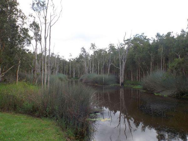 Illaweena Lagoon