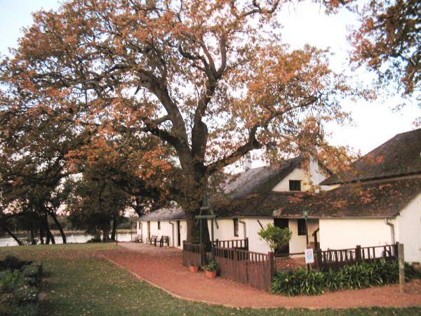 Historic Tranby House