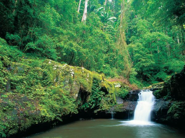 Waterfall - Image courtesy Tourism and Events Queensland