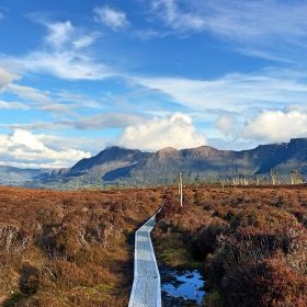 Overland Track Expedition January 2022