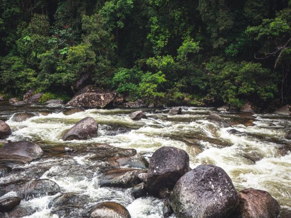 Mossman Gorge - Photo by Szabolcs Toth