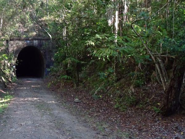 Old rail tunnel - photo by Ian Cochrane
