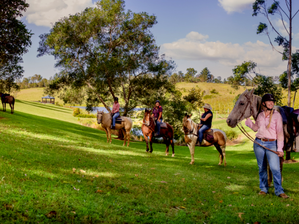 Horses with riders at the winery - Image courtesy of ocean view estates