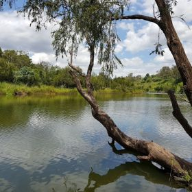 Brisbane River Canoe Trail : Wivenhoe to Lowood May 2021