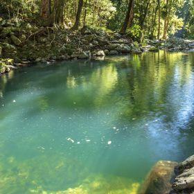 Caves Circuit via Bellbird Lookout + Gwongoorool Pool