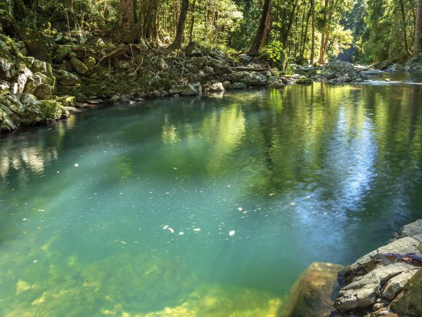 Gwongoorool Pool - Image by Nicholas Hill © Queensland Government