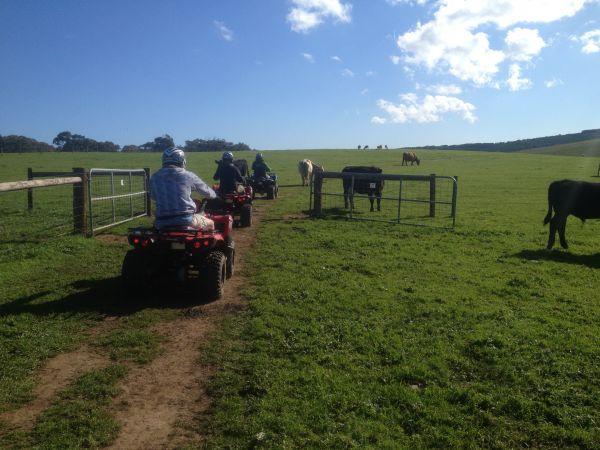 Heading out - Image courtesy of Waitpinga Quads