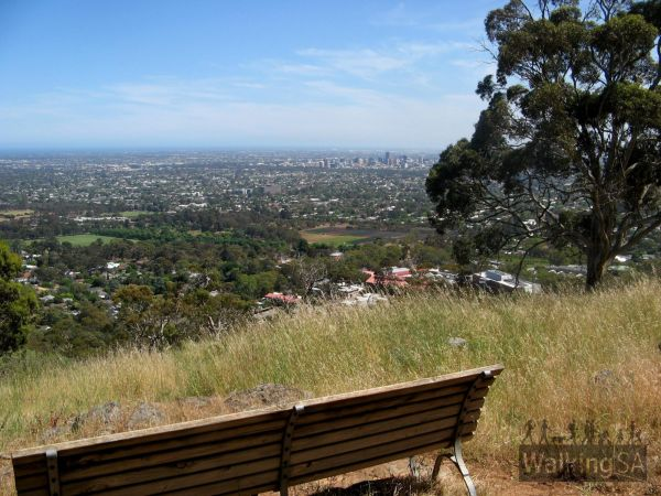 Views from Waite Conservation Reserve Loop Walking Trail -  Image courtesy of Walking SA