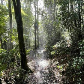 Westray's Grave Return Hike August 2021
