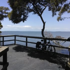Lota Mangrove Boardwalk and Bayside Walk