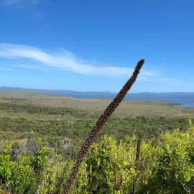 Mt Seawah Hike September 2021