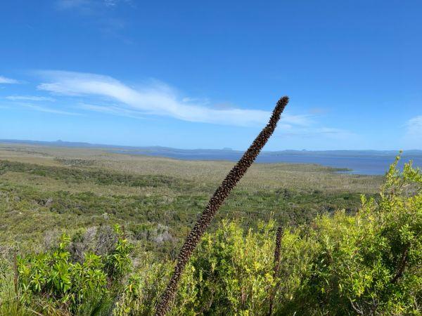 Mt Seawah Views