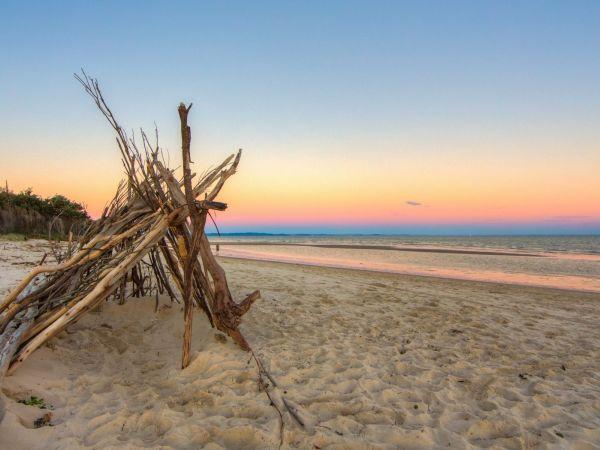 Red Beach Driftwood - Image courtesy of visitmoretonbayregion.com.au